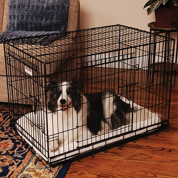 BEST PUPPY APARTMENT TRAINING CRATE WITH DIVIDER