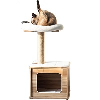 BEST SMALL ALL WOOD CAT TREE summary