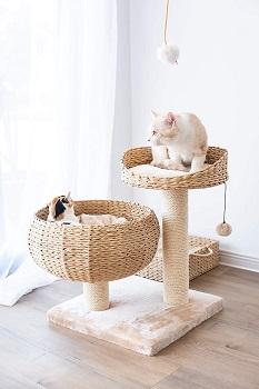 BEST SMALL ARTISTIC CAT TREE
