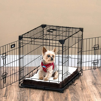 BEST SMALL BLACK DOG CRATE