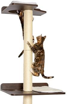 BEST TALL ALL WOOD CAT TREE