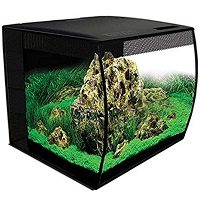 BEST WITH FILTER 15 GALLON LONG AQUARIUM summary