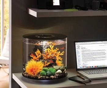 BiOrb Fish Aquarium
