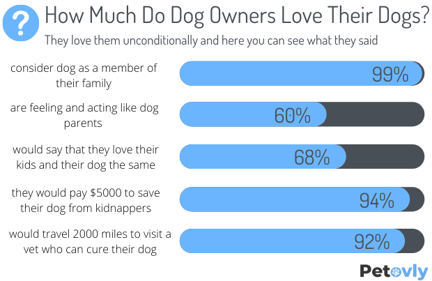 How Much Do Dog Owners Love Their Dogs