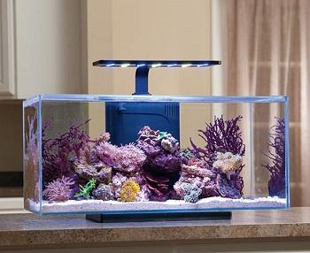 JBJ Rimless Desktop Flat Panel Aquarium