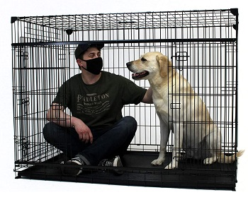 BEST 40-inch TALL DOG CRATE