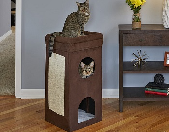Midwest Homes Cat Condo