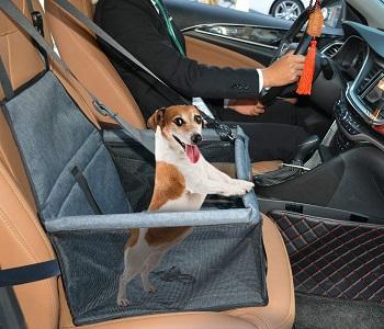 Swihelp Dog Car Seat Crate