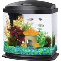 BEST CORNER 2.5 GALLON BETTA FISH TANK summary