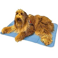 BEST LARGE COOLING CRATE PAD Summary