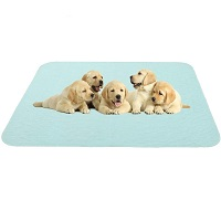 BEST LARGE MAT FOR UNDER DOG CRATE Summary