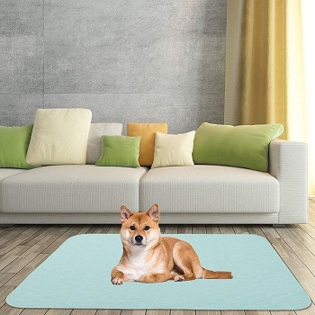 BEST LARGE MAT FOR UNDER DOG CRATE
