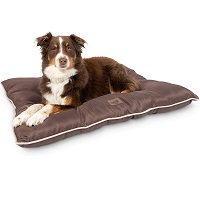 BEST LARGE PUPPY BED FOR CRATE Summary