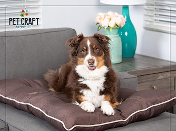 BEST LARGE PUPPY BED FOR CRATE