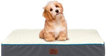 BEST-MATTRESS-WATERPROOF-DOG-CRATE-1024x578