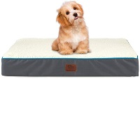 BEST MATTRESS WATERPROOF DOG CRATE Summary