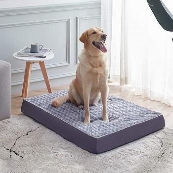 BEST MEDIUM DOG CRATE BED WASHABLE