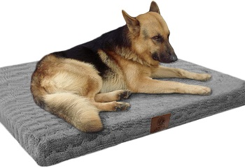 BEST MEMORY FOAM DOG BED FOR CRATE