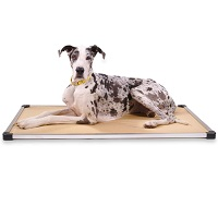 BEST METAL DOG CRATE PAD WASHABLE Summary