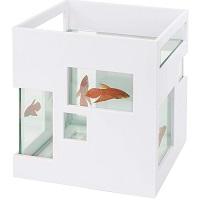 BEST MODERN 2 GALLON BETTA FISH TANK summary