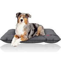 BEST OF BEST LARGE DOG CRATE BED SUmmary