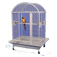BEST ON WHEELS ANTIQUE WROUGHT IRON CAGE SUmmary