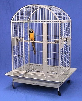 BEST ON WHEELS ANTIQUE WROUGHT IRON CAGE