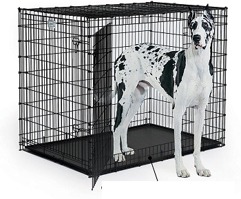 BEST PLASTIC DOG CRATE TRAY XL