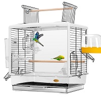 BEST PLASTIC SMALL BUDGIE CAGE SUmmary