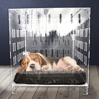 BEST SMALL ACRYLIC DOG CRATE