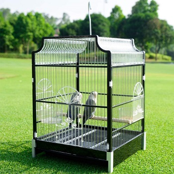 BEST SMALL ANTIQUE HANGING BIRD CAGE