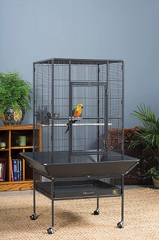 BEST SMALL BIRD EXTRA LARGE PARAKEET CAGE