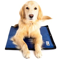 BEST SMALL COOLING PAD FOR DOG CRATE Summary