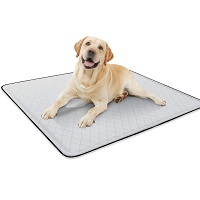 BEST SMALL MAT FOR UNDER DOG CRATE Summary