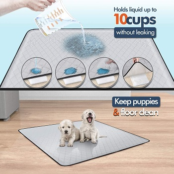 BEST SMALL MAT FOR UNDER DOG CRATE