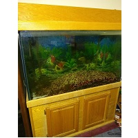 BEST WITH A STAND GALLON TURTLE TANK summary