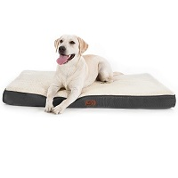 BEST XL CRATE BED FOR PUPPIES Summary