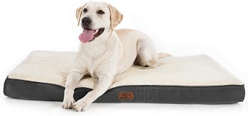 BEST XL CRATE BED FOR PUPPIES