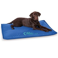 BEST XL DOG CRATE COOLING MAT Summary
