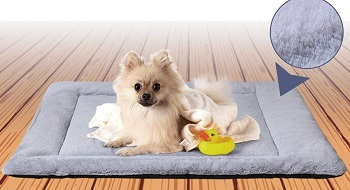 BEST XL DOG CRATE PAD WASHABLE