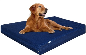 BEST XL MEMORY FOAM DOG CRATE PAD