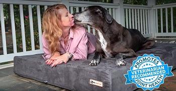 Big Barker 7 Orthopedic Dog Bed