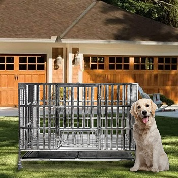 """Confote 48"""" Heavy Duty Dog Cage"""
