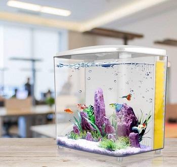FREESEA Betta Aquarium Fish Tank