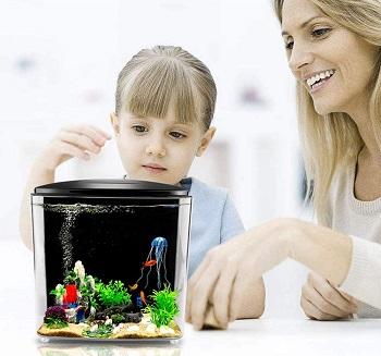 FREESEA Betta Aquarium