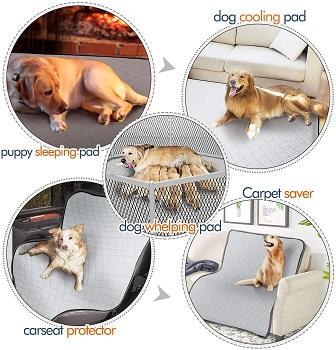 Gimars Non-Slip Washable Dog Mat