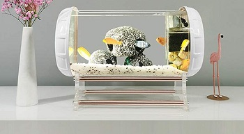 JHCC Desktop Ecology Acrylic Aquarium