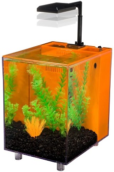 Penn Plax Prism Nano Aquarium