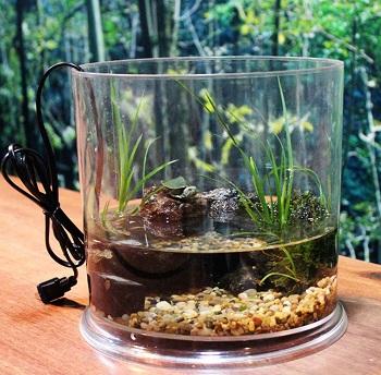 Saim Round Betta Tank Aquarium