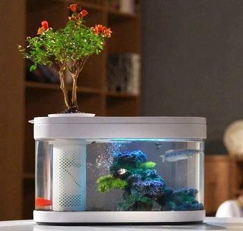 Sheebo Modern Aquarium Kit